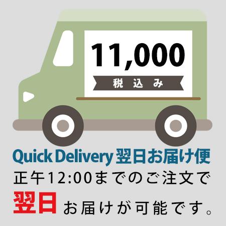 quick10000