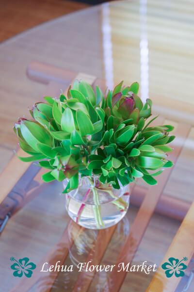 お花の定期装花